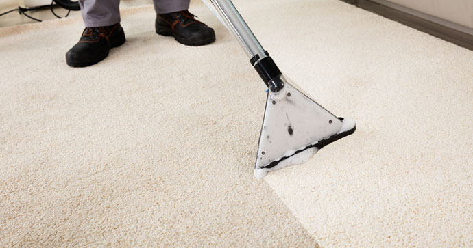 Professional cleaner steam-cleaning a dirty carpet
